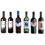 offerta degustazione vini di ruscio