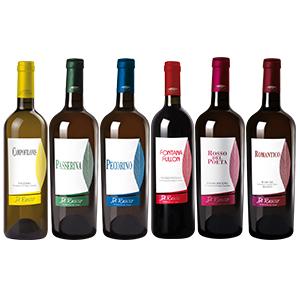 offerta degustazione vini marche pecorino passerina rosso piceno falerio