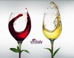 Conclusioni Vinitaly 2012