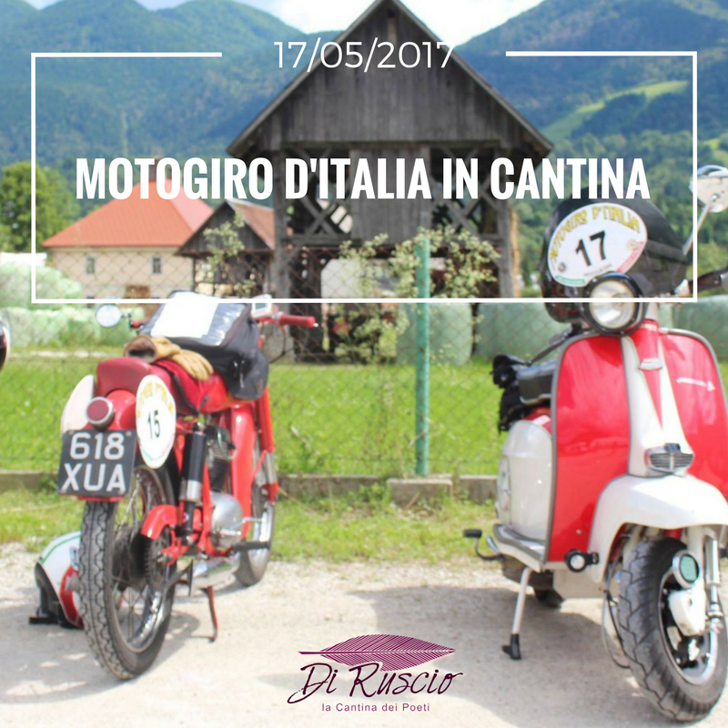 Motogiro in Cantina, le foto