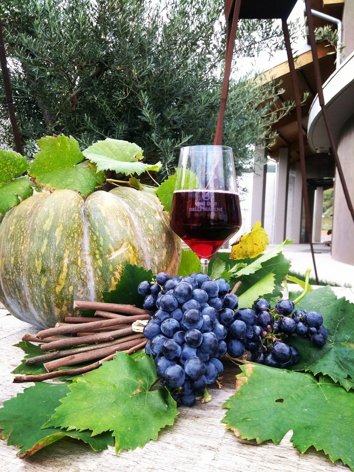 E' arrivato Brigante, il Vino Rosso 2018!